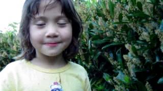 Little girl eats bug