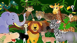 getlinkyoutube.com-Learn About Animals - For Toddlers - Animal Song - Animal Song - Zoo Animals