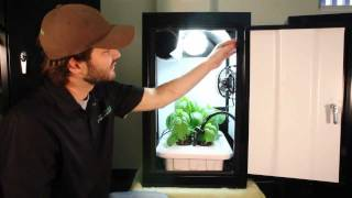 getlinkyoutube.com-Hydroponic Grow Box works best! Growing kit by Supercloset