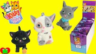 getlinkyoutube.com-Kitty In My Pocket