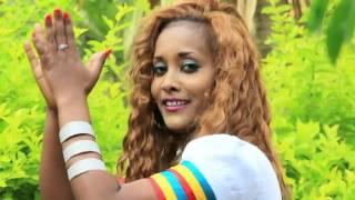 getlinkyoutube.com-New Ethiopian  amhara Music 2016 Official Video -Zeni Tizazu Aman Awlegn
