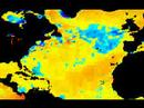 SST anomalies 2001-2008 - north atlantic