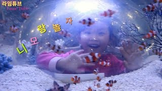 getlinkyoutube.com-아쿠아리움 니모 우파루파 닥터피쉬 구피 디스커스 대형금붕어 관상어 박람회 Aquarium Fancy Fish  Exhibition Игрушки 라임튜브