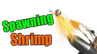 getlinkyoutube.com-Peterson Spawning Shrimp Bonefish Pemit Fly Tying Instructions