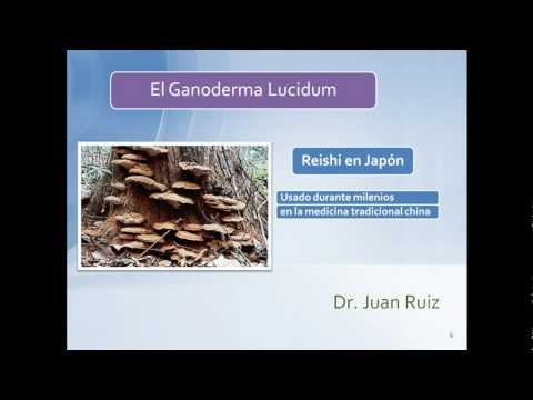 Ganoderma Lucidum - Dr Ruiz