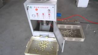 getlinkyoutube.com-small garlic peeling machine