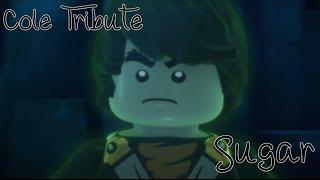 LEGO Ninjago | Cole Tribute | Sugar