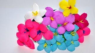 getlinkyoutube.com-Kwiaty z bibuły  krok po kroku -  bąbelkowe # Crepe paper flowers DIY