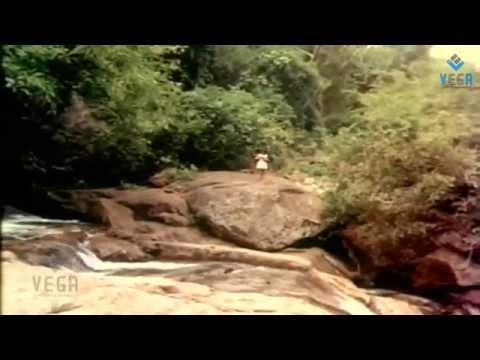 Sridevi Tempted - Pakalil Oru Iravu
