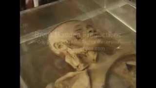 getlinkyoutube.com-Thailand Best Most Amazing FAIL Compilation Condon Anatomy Museum of Death Bangkok