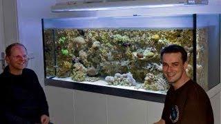 getlinkyoutube.com-A perfect german reef aquarium vol.1