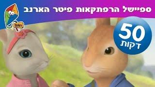 getlinkyoutube.com-הרפתקאות פיטר הארנב - פרקים ברצף - ערוץ הופ!