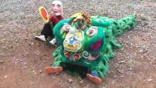 getlinkyoutube.com-เชิดสิงโตงานบวชพระนุ๊ก
