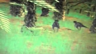 getlinkyoutube.com-Homalacephalae music vid-Superheroes