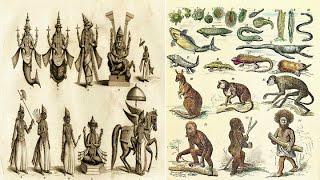 getlinkyoutube.com-Hinduism - 10 Avatars of Vishnu and Darwin's Theory of Evolution - Parallels