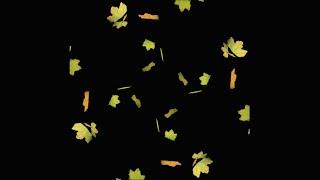 getlinkyoutube.com-Falling Leaves - Pyramid Hologram Screen Down