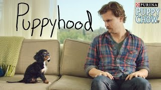 getlinkyoutube.com-Puppyhood