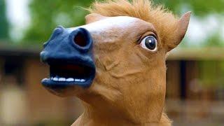 getlinkyoutube.com-HORSE