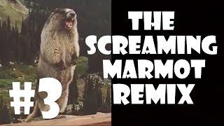 getlinkyoutube.com-The Screaming Marmot - Remix Compilation #3