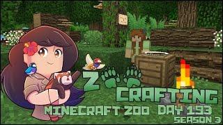 getlinkyoutube.com-At Home in Adventure!! • Zoo Crafting: Episode #193 - Season 3
