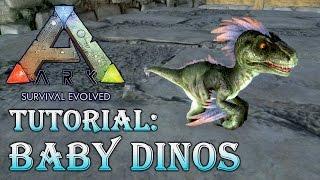 getlinkyoutube.com-ARK: SURVIVAL EVOLVED ★ TUTORIAL | Baby Dinos |  Dinosaur Eggs  | Brutstation [Epic | Deutsch]