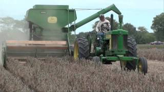 getlinkyoutube.com-BEAN HARVEST with Antique Combines JD & Oliver  tubalcain