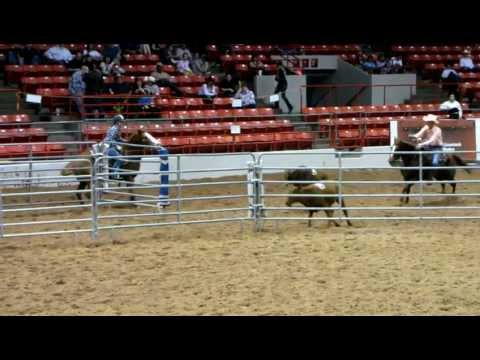 RCC Raging Cajun - 3/12/12 Houston USTPA show - youth penning - no-time  - Valley View Ranch