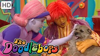 getlinkyoutube.com-The Doodlebops: Strucel Doodle (Full Episode)