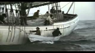 getlinkyoutube.com-lobo do mar