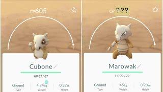 getlinkyoutube.com-Pokemon Go Cubone(605) Evolution to +1000Marowak