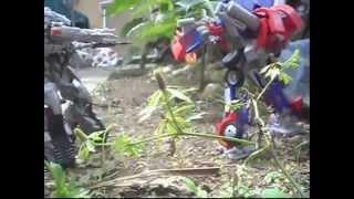 Transformers ROTF: Forest Battle (stop motion) Español latino