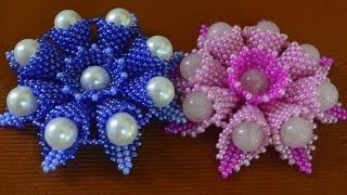 getlinkyoutube.com-Цветы из бисера.  Бисероплетение.  Мастер класс / Flowers from beads. Beading