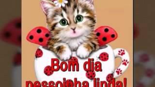 getlinkyoutube.com-Linda Mensagem de Bom Dia - Bom Dia Amigos - Vídeo de Bom Dia