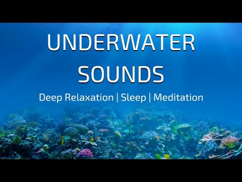 UNDERWATER SOUNDS Relaxation | DEEP SEA Soundscape | Underwater Ambience
