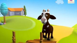 getlinkyoutube.com-Two Silly Goats | A 3D English Story for Children | Periwinkle | Story 8