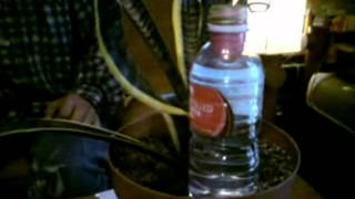 getlinkyoutube.com-Slow Drip Irrigation System