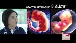 getlinkyoutube.com-พัฒนาการทารกในครรภ์ ช่วงไตรมาส 1