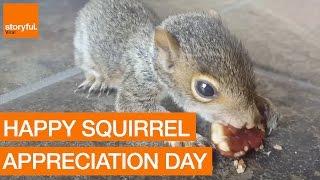 getlinkyoutube.com-The Slickest Selection of Sensational Squirrels