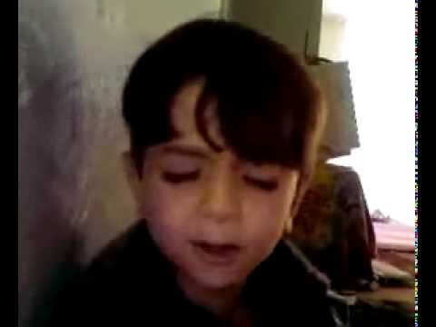 SMAAL CUTE    SINGING  inqelabi song