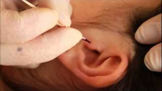 getlinkyoutube.com-Piercing Oreille Tragus TattooStudioTewfick.com Angers