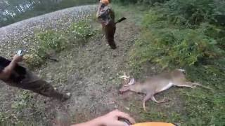 getlinkyoutube.com-Deer Dog Drive 10/15/16 Big 8 Point Killed