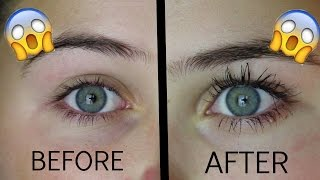 getlinkyoutube.com-How To Grow Your Eyelashes In 1 Day!