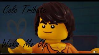 getlinkyoutube.com-LEGO Ninjago | Cole Tribute | Wake me up ♪