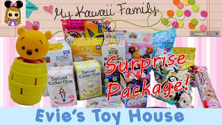 getlinkyoutube.com-Huge Surprise Toy Package from My Kawaii Family with Tsum Tsum from Japan | Evies Toy House