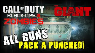 BO3: ALL GUNS Pack a Punched ★ Black Ops 3 Zombies (The Giant)