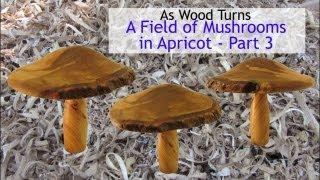 getlinkyoutube.com-Woodturning A Field of Mushrooms (Part 3)