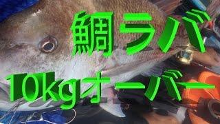 getlinkyoutube.com-鯛ラバで真鯛 10kgオーバー!!(カヤック)