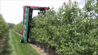getlinkyoutube.com-UMass Fruit Advisor: MassCon Tunnel Sprayer -- June 1, 2011