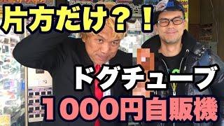 getlinkyoutube.com-ドグチューブモデルの1000円自販機に挑戦!vol328 ドグチューーブ 第633回