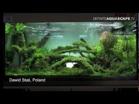 Aquascape - The Art of The Planted Aquarium 2011, Dawid Staś